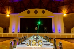 TKO Entertainment - Astrodome wedding reception