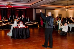 TKO Entertainment wedding reception at  Embassy Suites Rockside